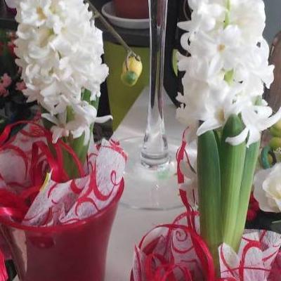 kwiaty wdoniczce